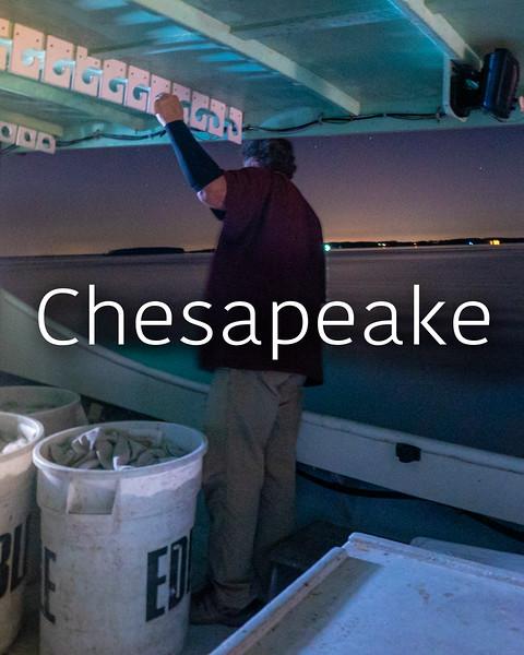 chesapeake_00000.jpg