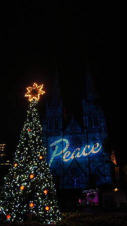 St Marys Cathedral Christmas 2011