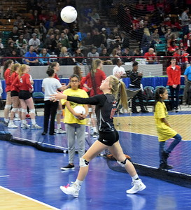 Sterling Tigers 3A state volleyball
