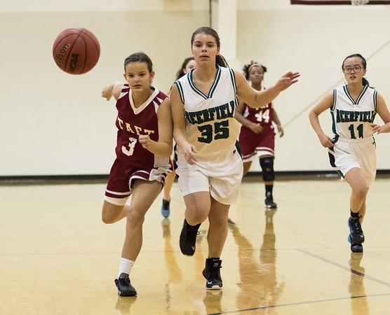 1/13/16: Girls' JV Basketball v Deerfield