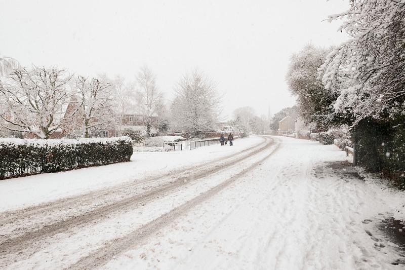 snow444pp.jpg