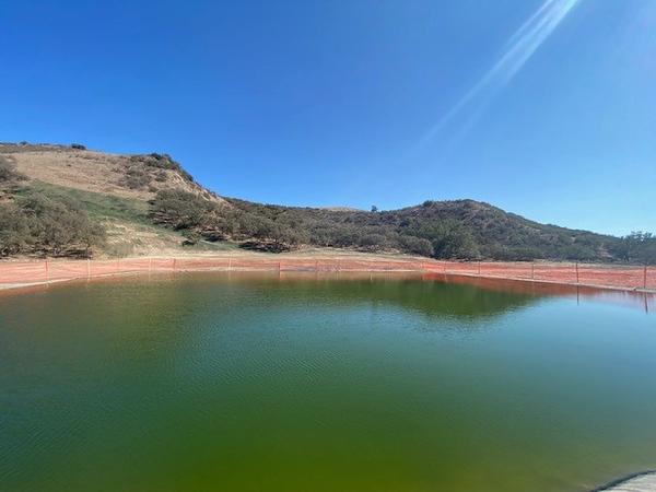 Pond natural 2.jpg