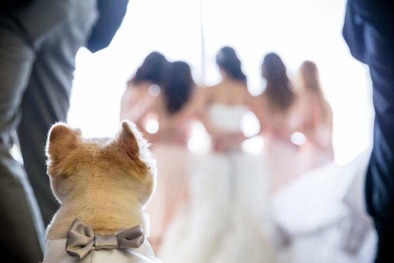 kim_wedding.jpg