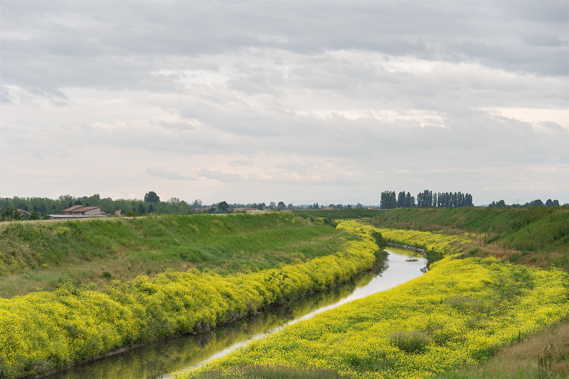 Crostolo Stream - Gualtieri, Reggio Emilia, Italy - May 16, 2021
