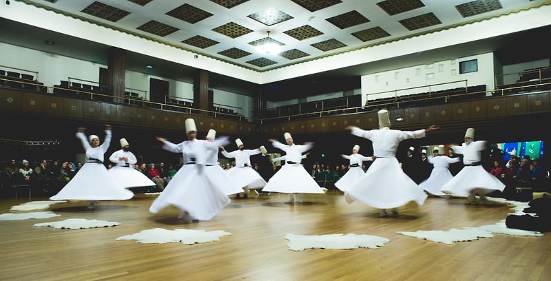 Movement Exhibit-4348.jpg