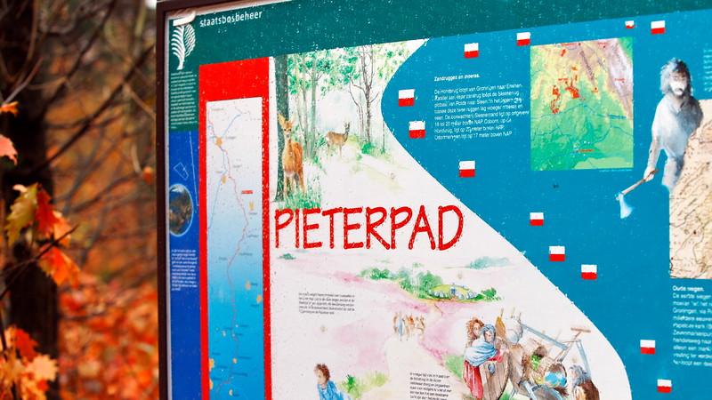 Images from folder 2013-11-02-Drenthe