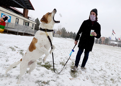 Photos: Boulder County Snow on December 11, 2020