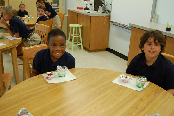Making Plant and Animal Cells with Jello
