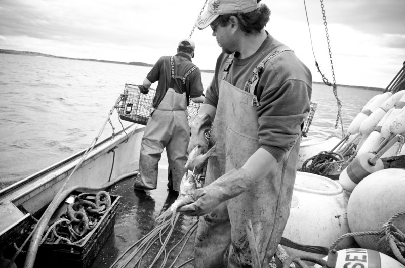 45. Setting moorings, pulling lobster traps, Casco Bay, Maine, May 2013.