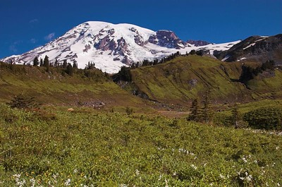 Mt. Rainier 2005