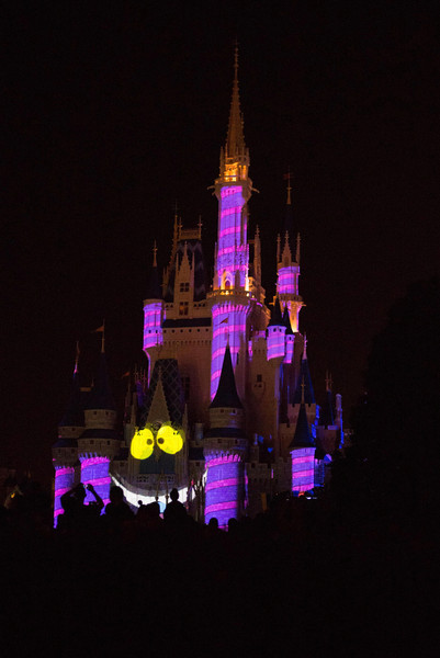 Cheshire Cat on the Castle