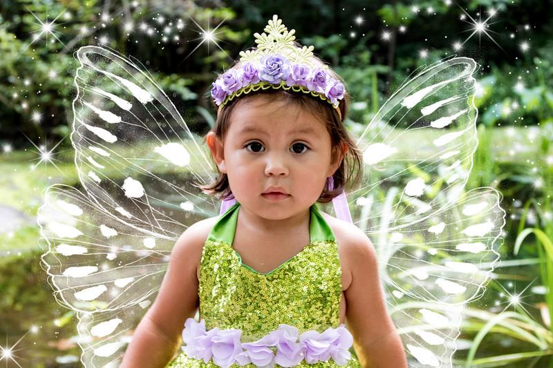 795A1945 fairy.jpg