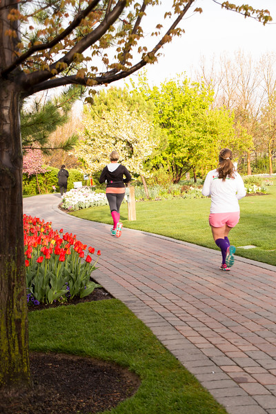 TulipFestHalfMarathon_Runners_Gardens_2015_IMG_5167.jpg
