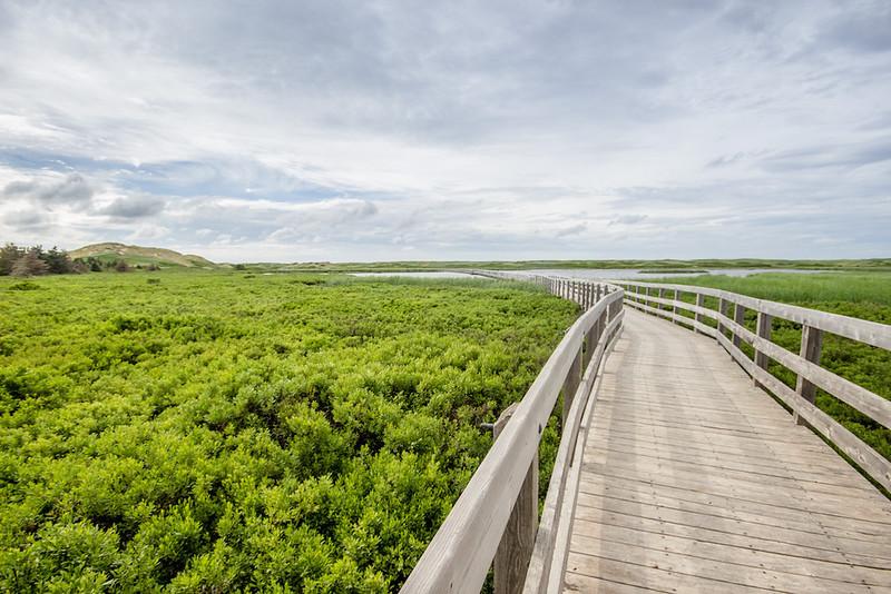 Canada-PEI-Greenwich-Dunes-Trail-2.jpg