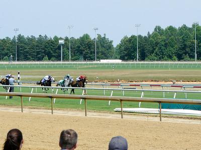 2008 - Horse Race VA