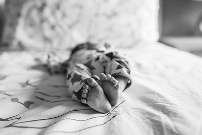 Louis J Lifestyle Newborn
