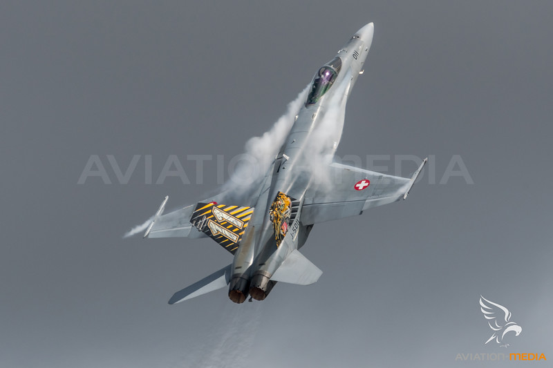 Swiss Air Force 11th Squadron / McDonnell Douglas F/A-18C Hornet / J-5011 / Tiger Livery