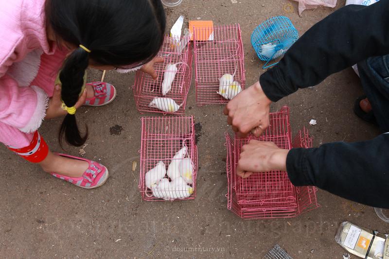 documentary.vn-20090131-059.jpg