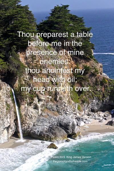 Psalm 23-5 j .jpg