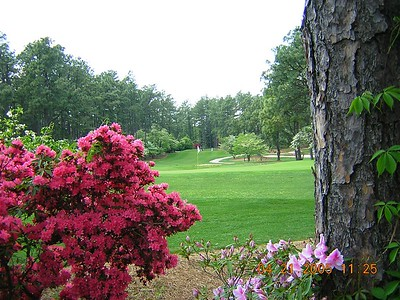 Golf Trip 2005