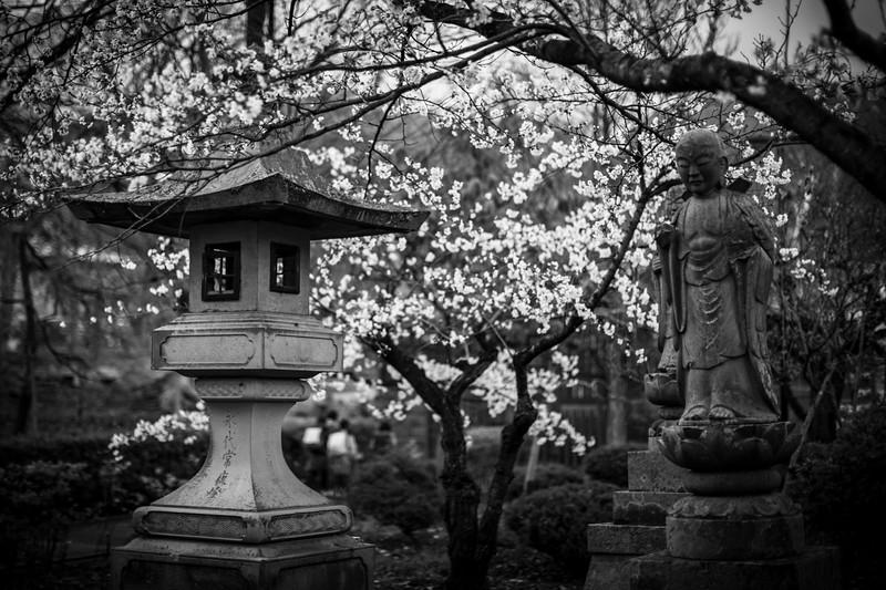 Nagano  12042013 014.jpg