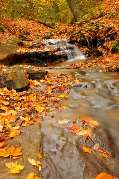 Near Wagner Falls