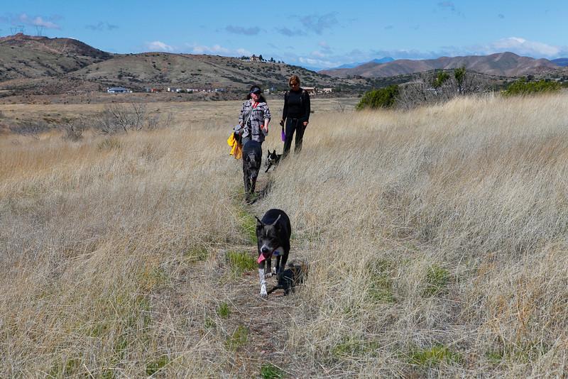 dogs_vasquez_075.jpg