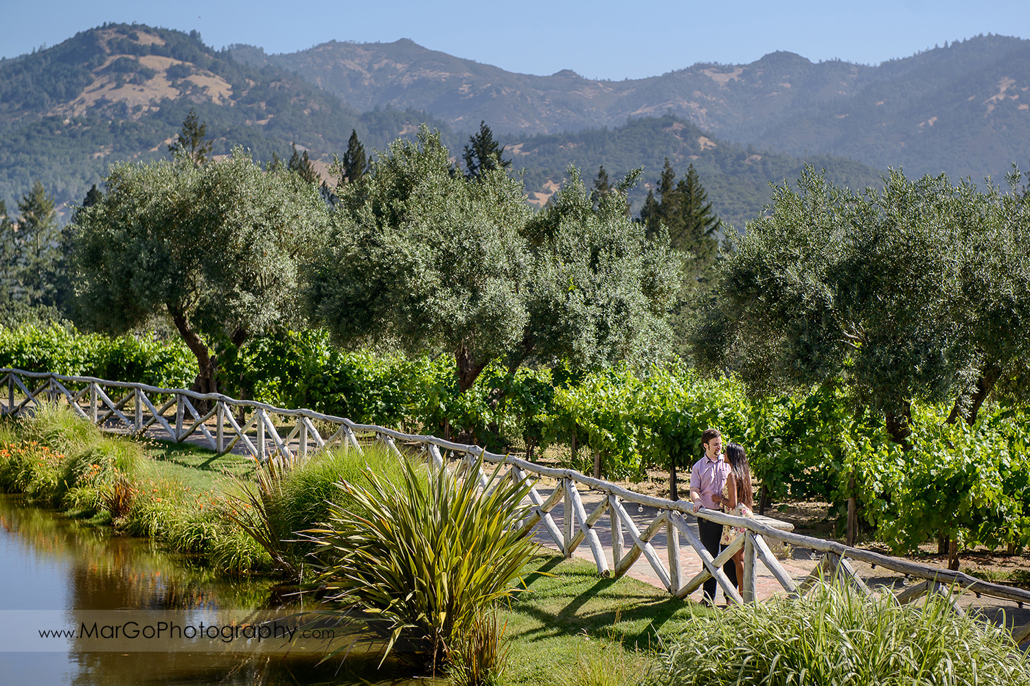 man in pink shirt and Indian woman in flower dress looking at each other behind the wooden fence during engagement session at Castello di Amorosa in Calistoga