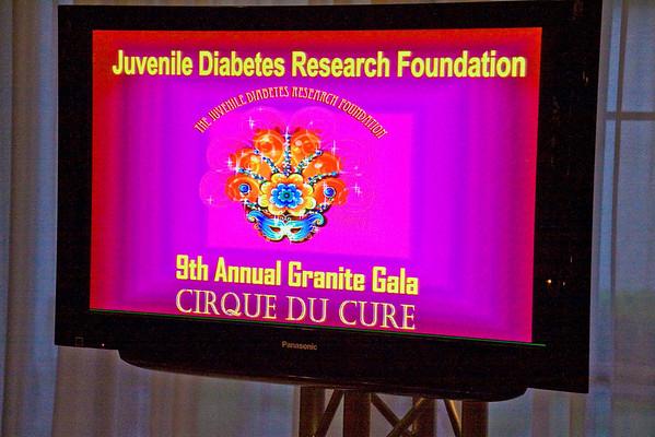 2010 JDRF Gala
