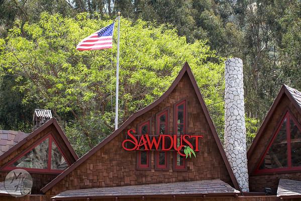 Sawdust Art Festival 2015