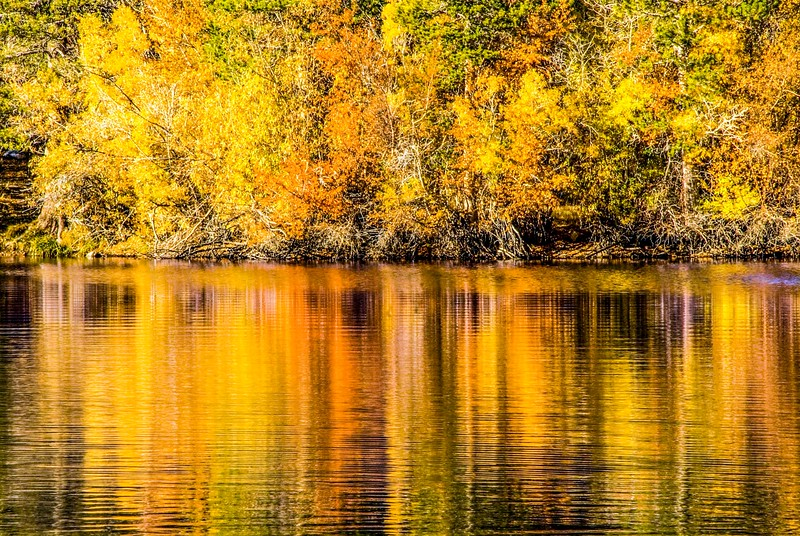 Sierras_Fall Colors-2.jpg