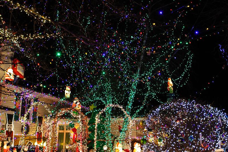 Rubens_IMG_0405 christmaslightscottagegrove.jpg
