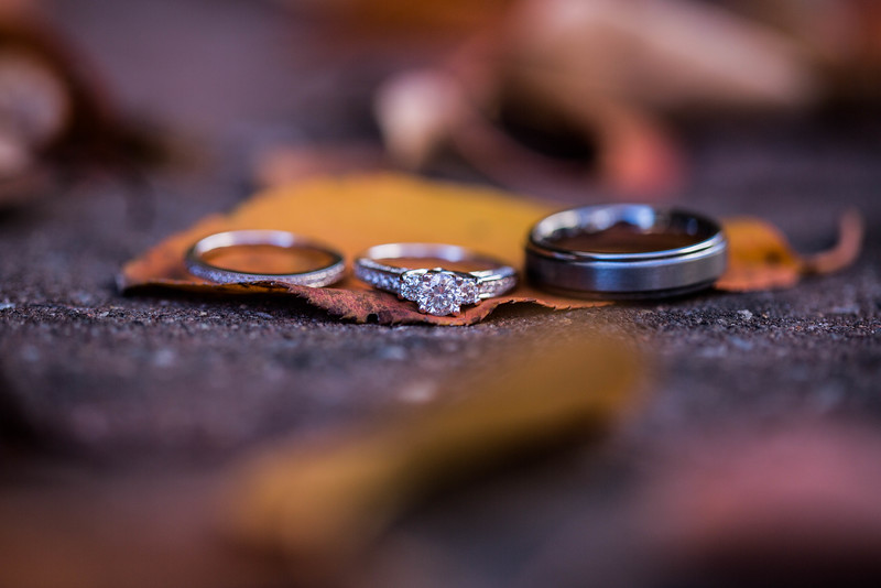 DICKERSON_WEDDING--9769.jpg