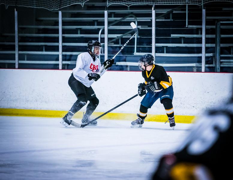 Bruins2-125.jpg
