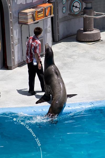 San Diego 2008