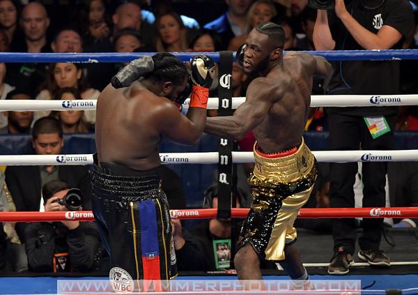 Deontay Wilder Defeats Bermane Stiverne by 1st Round TKO