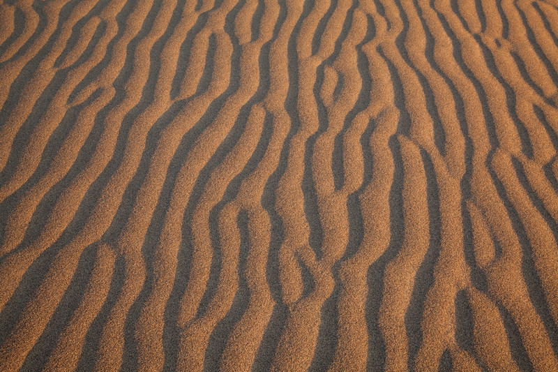 Sand Dunes 9332.jpg