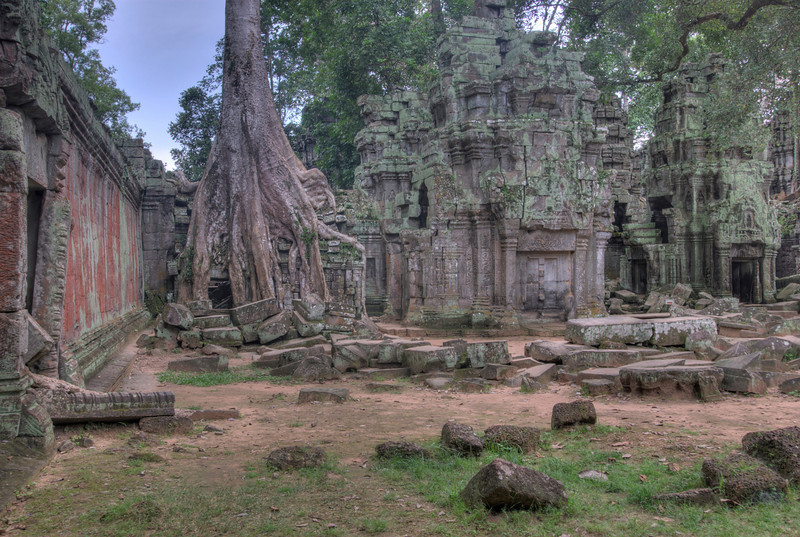 Trees and scattered rocks at Ta Prohm in Cambodia