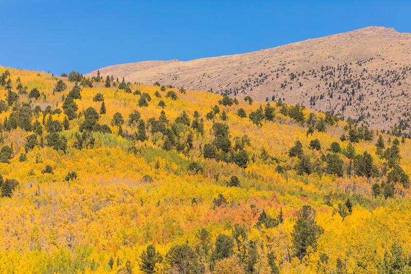 Colorado19_5D4-1226.jpg