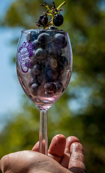 Julian Wine Stomp