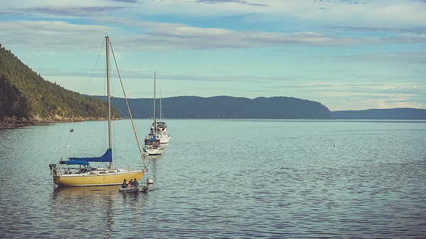 Welcome to Orcas Island