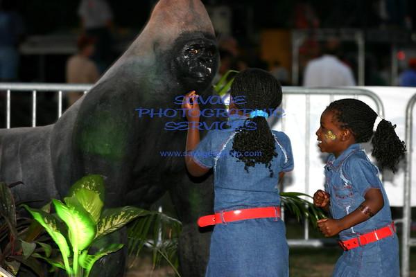 African Fest 9-3-5