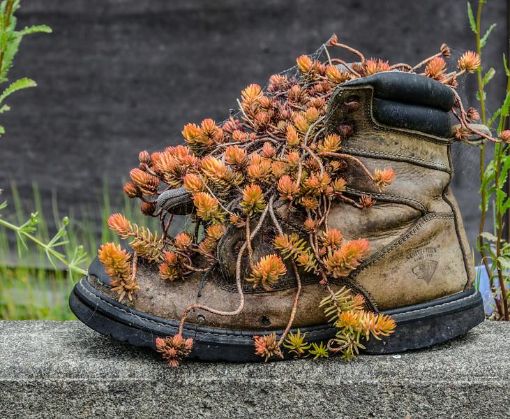 boot flower pot 2.jpg