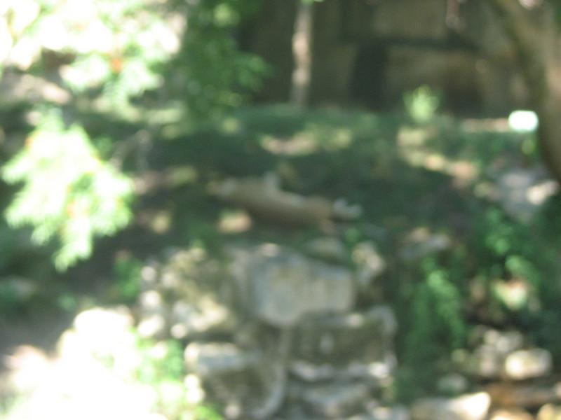 2008_0727_152912AA.JPG