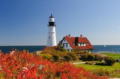 New England 13