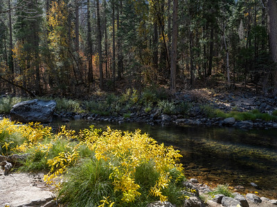 2019-11 Yosemite