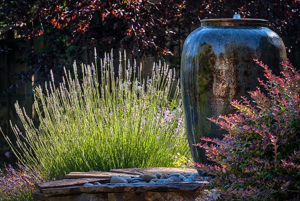 Andrews Garden 0