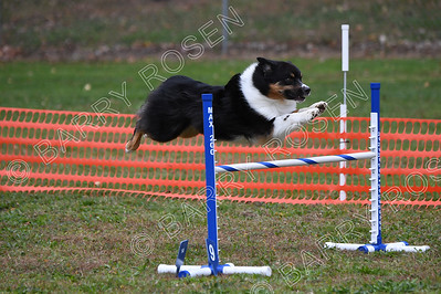 0285 Saturday Open Jumpers