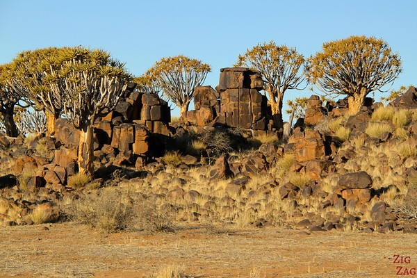 Giants playground and quiver tree, Namibia photo 2
