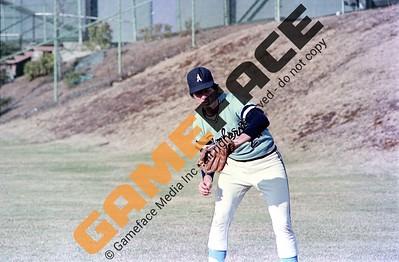 Amherst Men's Baseball